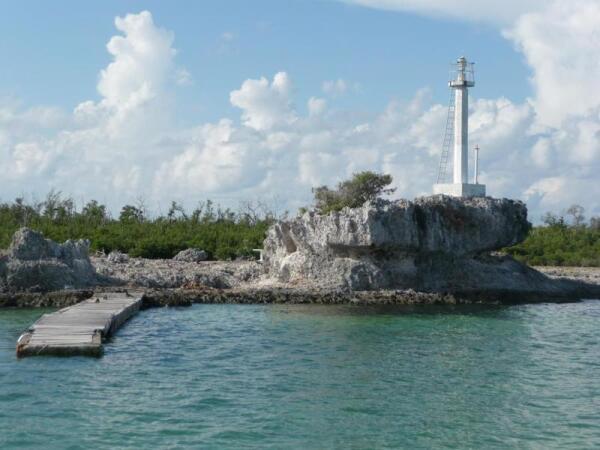 Остров варанов
