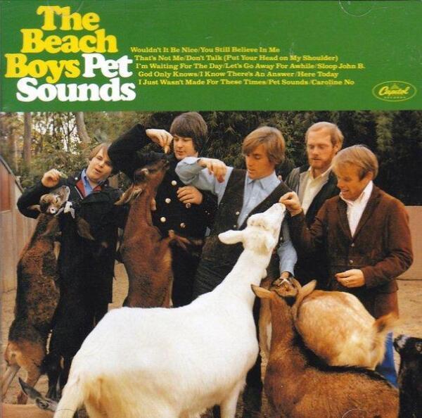 Название «Pet Sounds» можно перевести и как