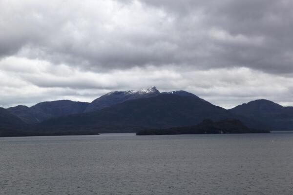Островки полностью покрыты растительностью