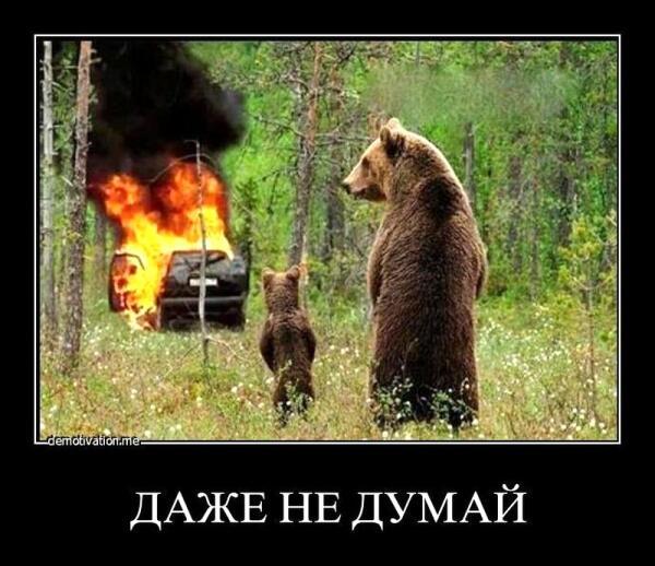 Горящий медведь.