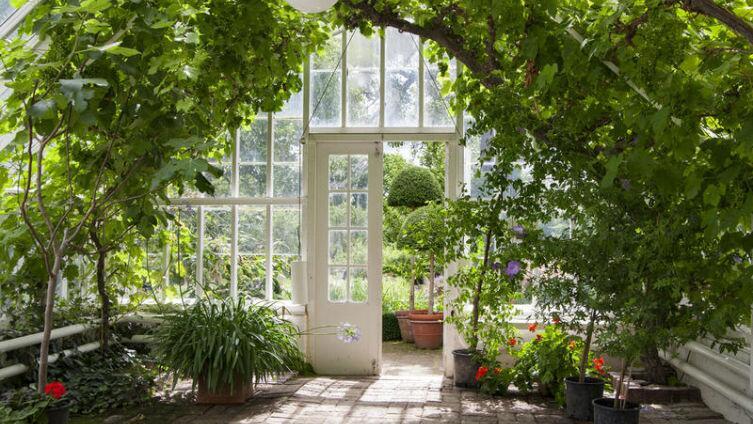 Как подступиться к пластиковому окну? Смятение и выбор