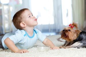 Как управлять поведением ребенка с помощью игр и маленьких хитростей? Часть 1