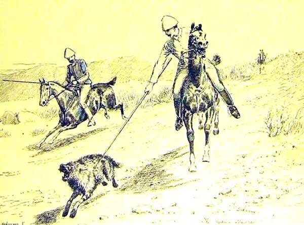 Охота на гиену с копьём в Британской Индии.