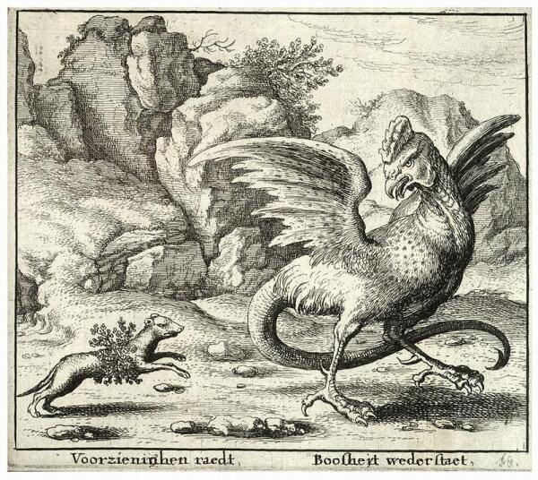 Ласка нападает на Василиска.