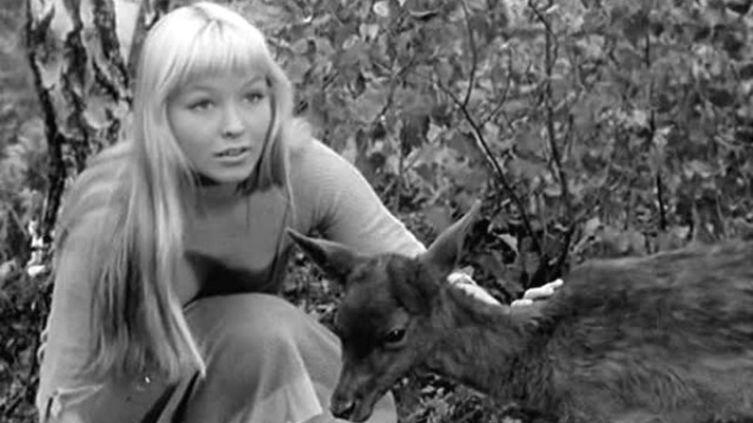 Кадр из фильма «Колдунья»