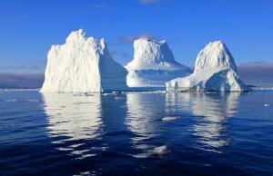 Можно ли использовать для полива морскую воду?