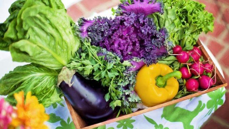 Чем органические продукты лучше обычных?