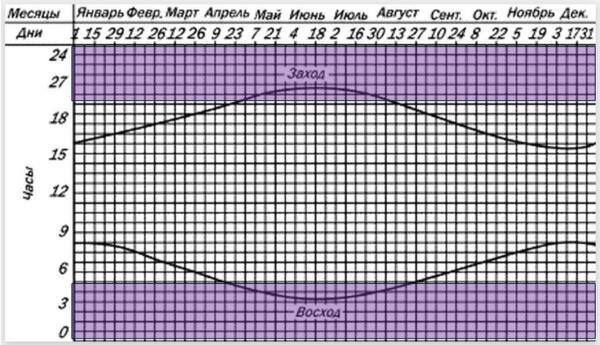 Рис. 2. График при декретном времени (летнем)