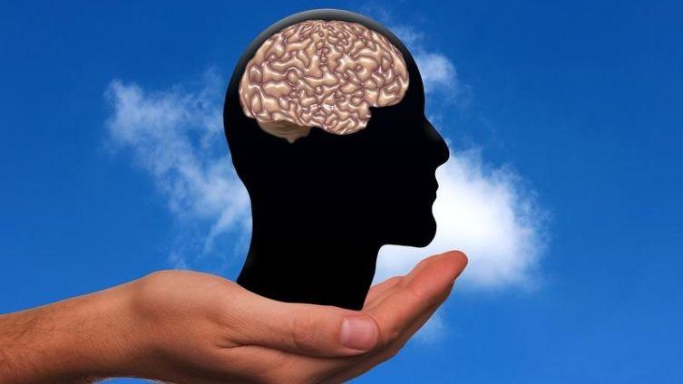 Пируват. Как улучшить работу мозга?