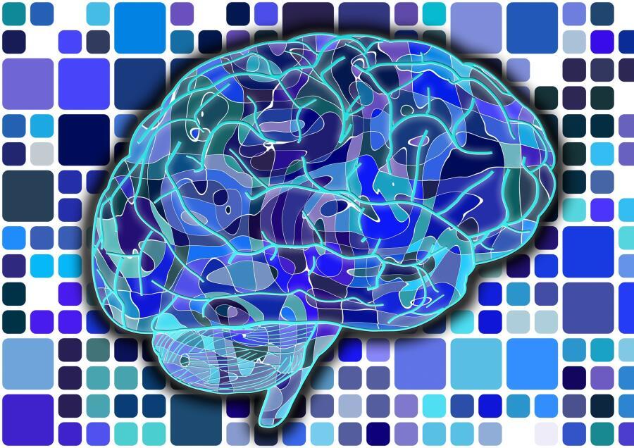 Кто написал первый в мире учебник по психиатрии? Забытый гений