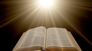 Правильные ответы к тесту Библейские растения. Флора в священной книге