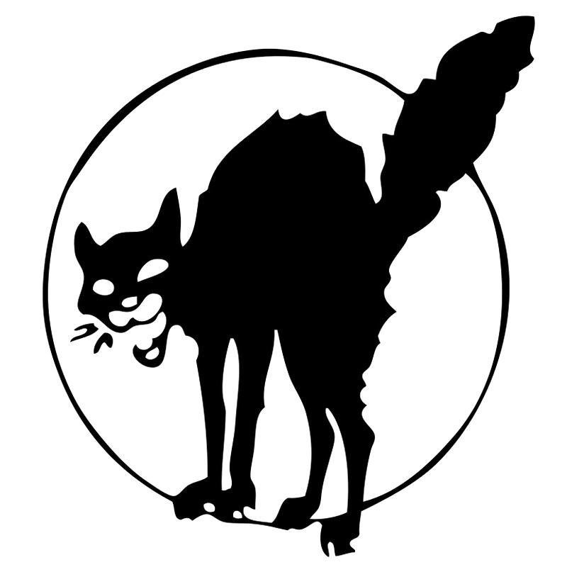 Кот анархистов