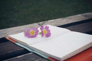Как развить писательский навык? Советы от Bookscriptor. 3. Пишите, пишите и ещё раз пишите!