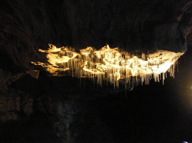 Светящие нити будут видны повсюду в пещерах