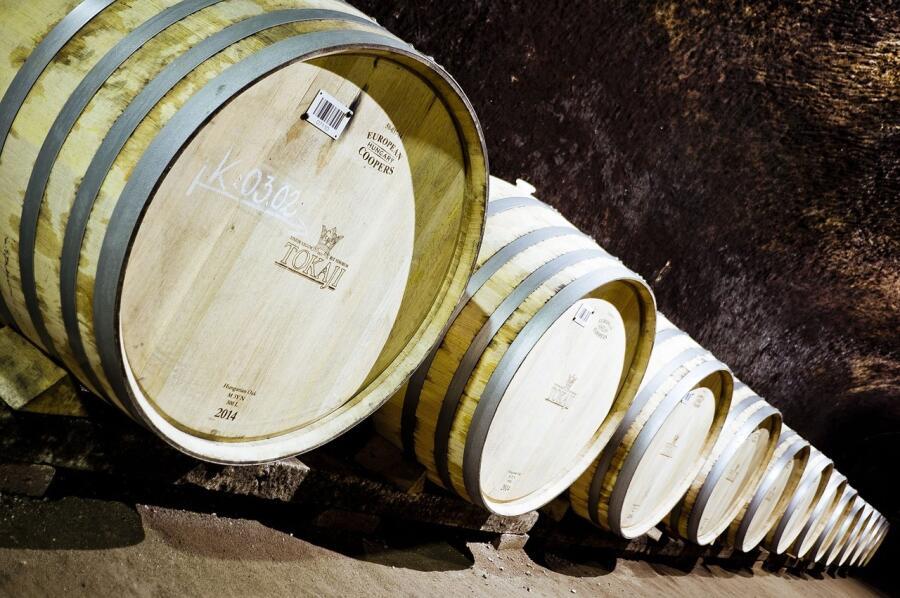 Что помогает создавать токайское вино?