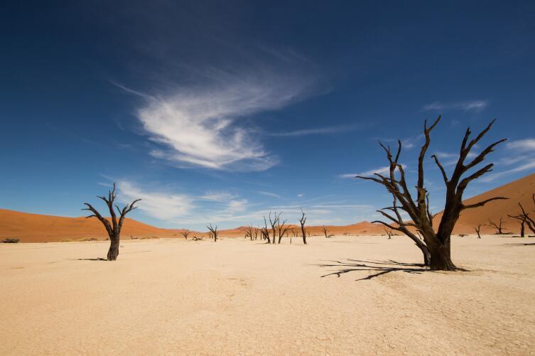 Уникальная Мертвая долина, Намибия