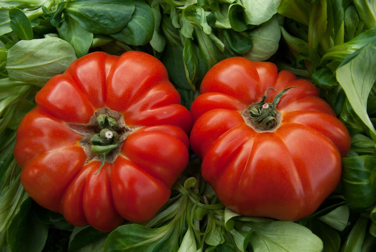 Ликопен, содержащийся в помидорах, играет важную роль в профилактике рака