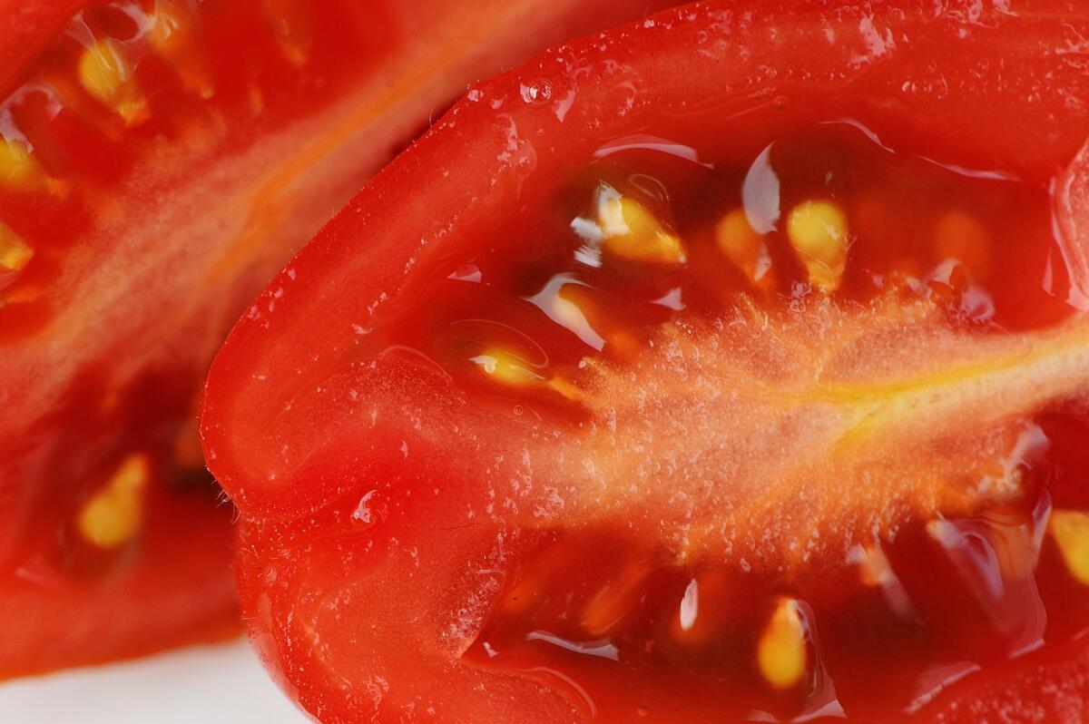 Если гены помидоров ввести в раковую опухоль, происходит реакция, которая разрушает раковые клетки