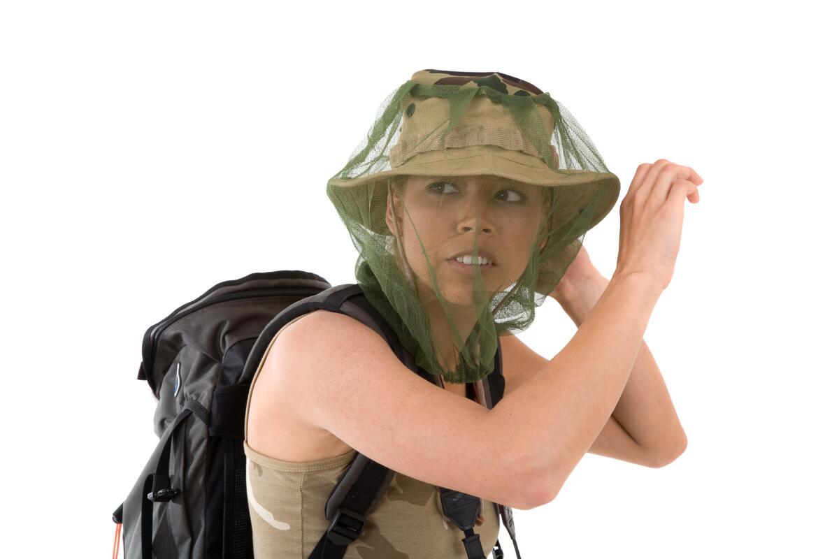 Отпугивает комаров запах гвоздики, базилика, аниса и эвкалипта