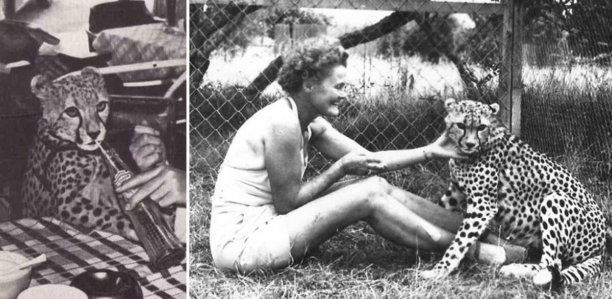 Слева— юная Пиппа; справа— Пиппа с Джой Адамсон.
