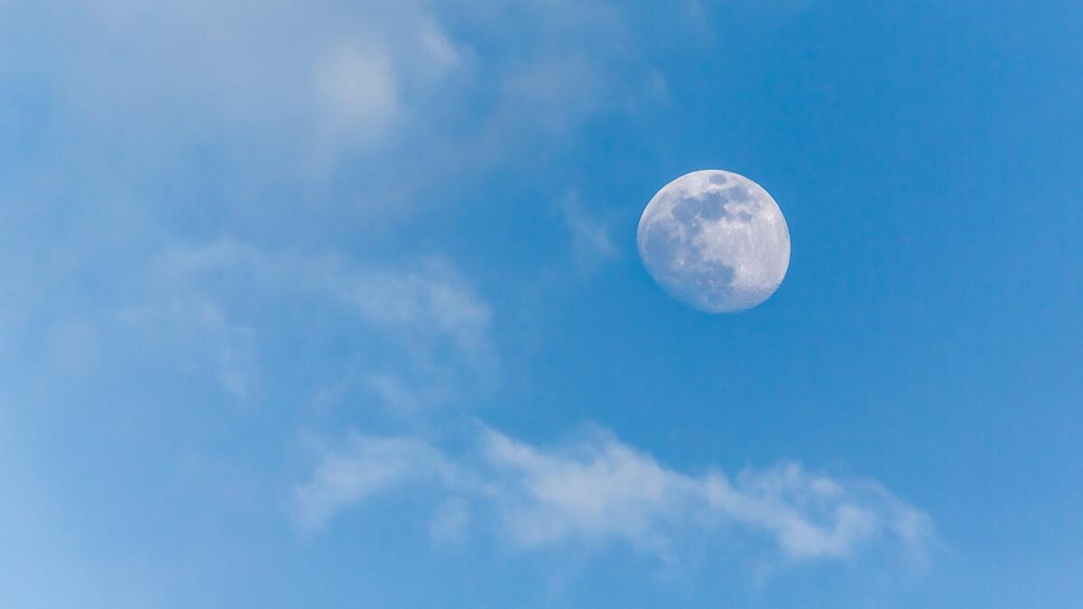 Все лунные участки - с видом на землю