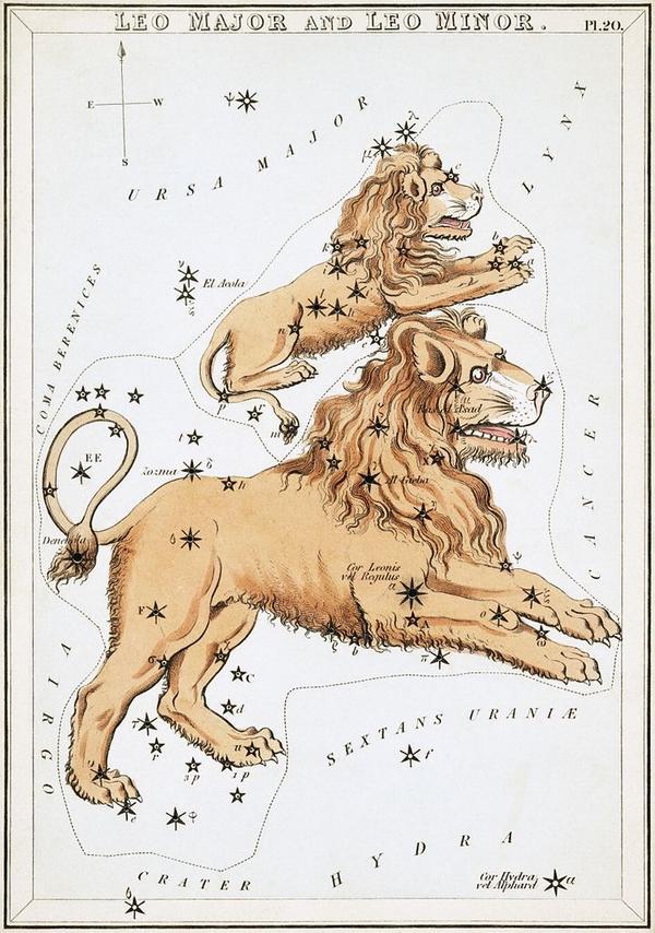 Созвездия Большого и Малого Львов