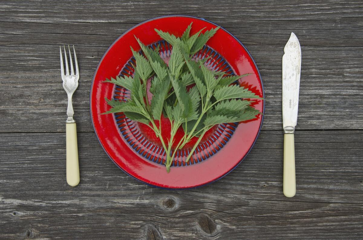 Первый весенний салат