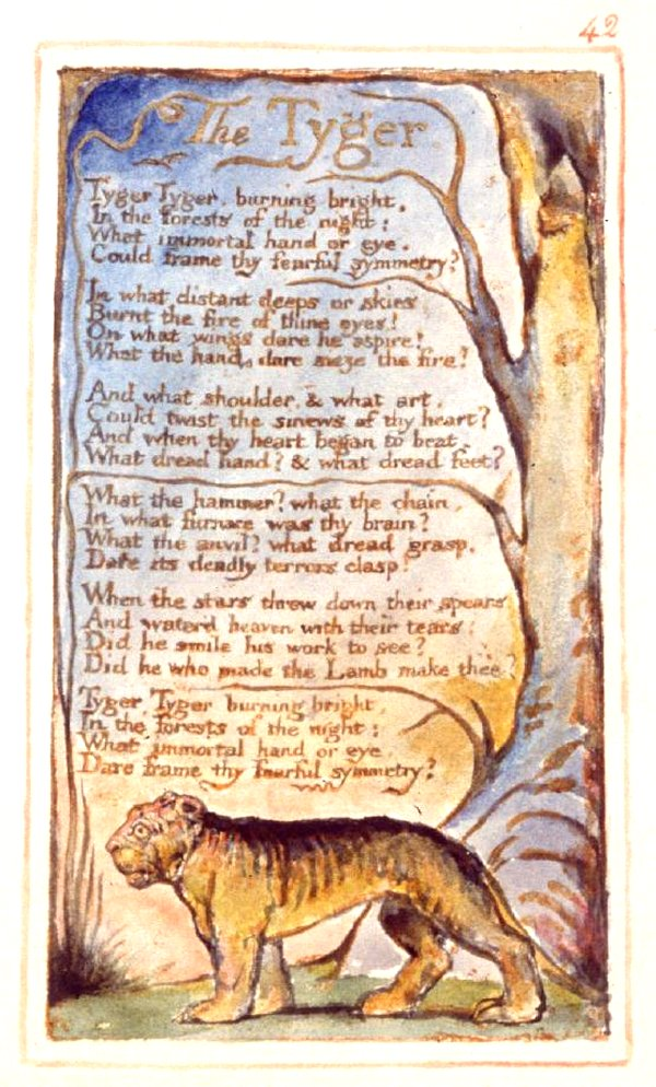 the tyger william blake This lesson plan uses william blake's poem 'the tyger' to study imagery and teach students to write using imagery the lesson plan includes a video.