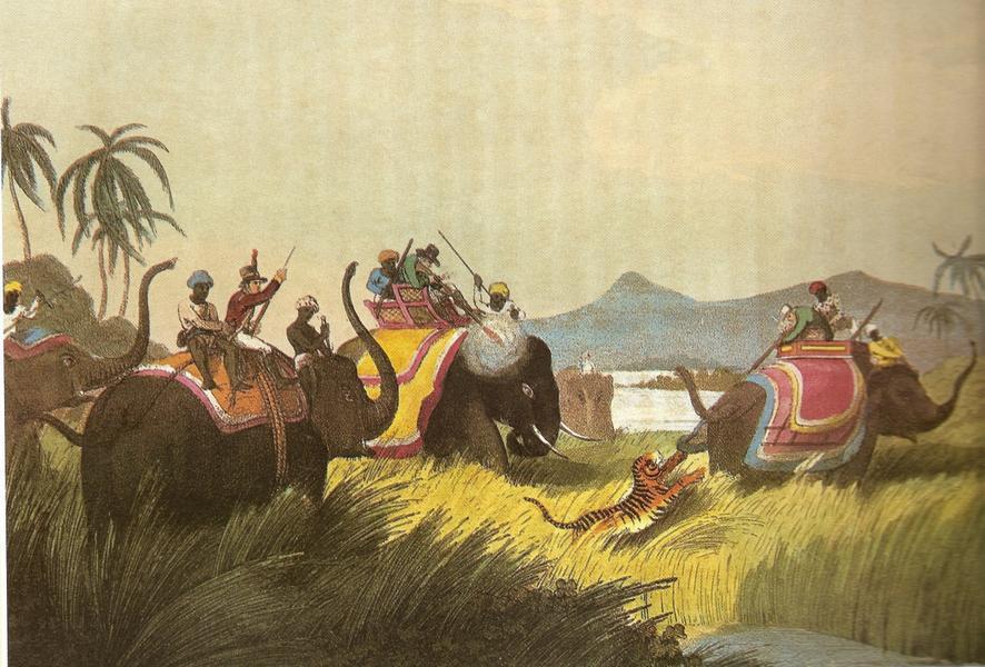 Охота на тигров в Индии в XIX веке