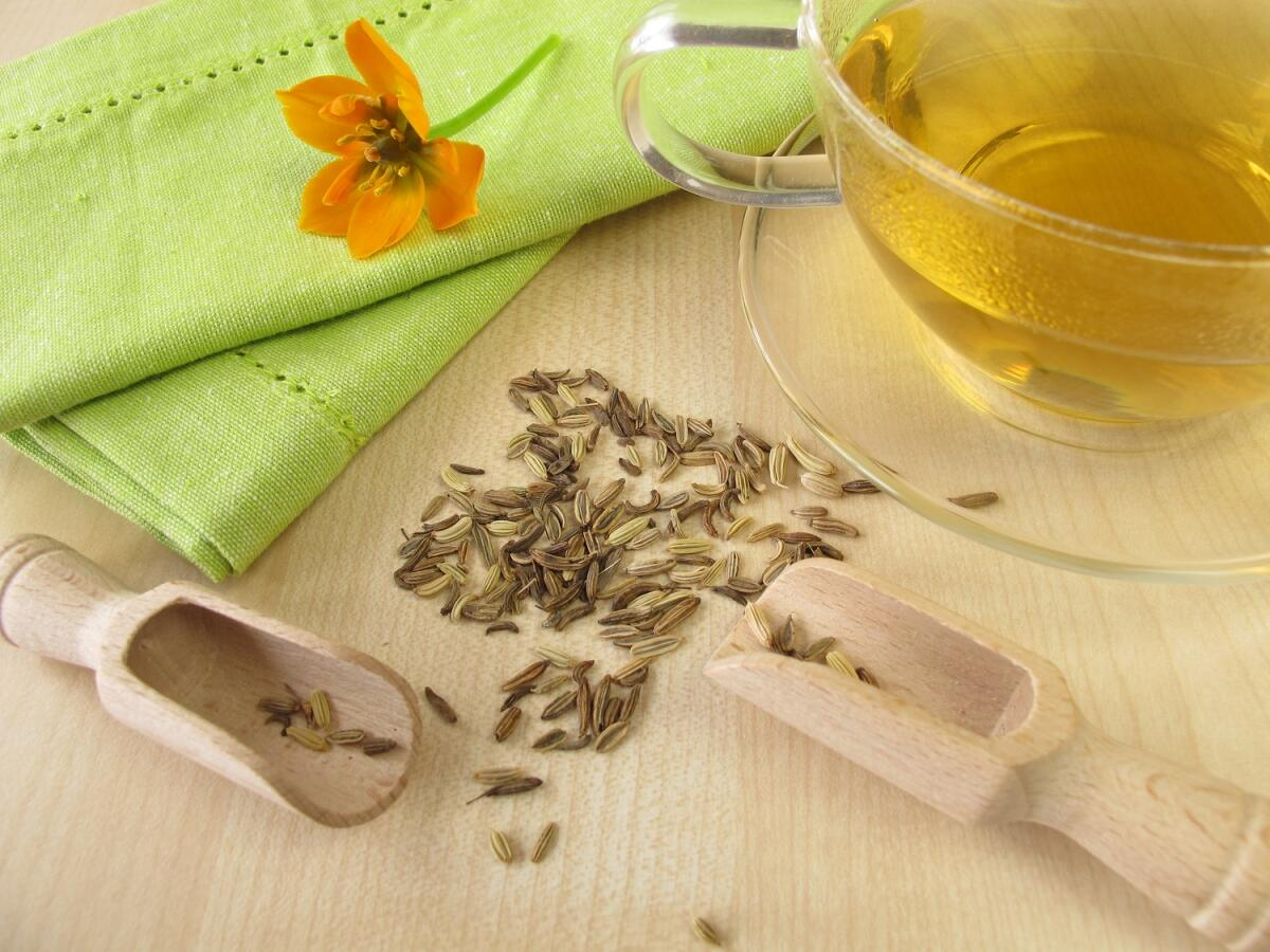 Укропный чай стимулирует лактацию у кормящих мам и устраняет кишечные колики у младенцев
