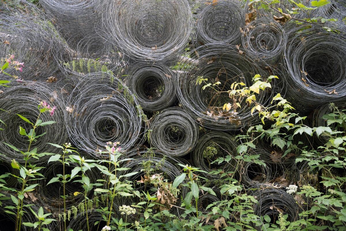 По его периметру участка в землю вертикально вкапывают специальную мелкоячеистую сетку, которая препятствует проникновению кротов