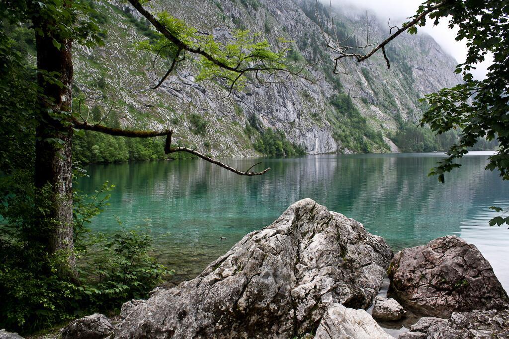 Природа вокруг Королевского озера просто потрясающая