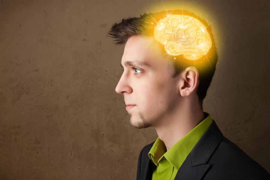 Укрощение амигдалы, или Как перепрошить мозг?