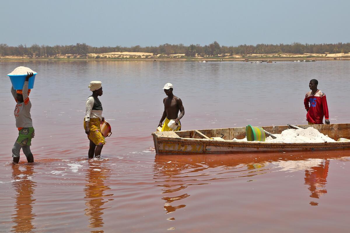 На берегу мужчины передают добытую соль женщинам