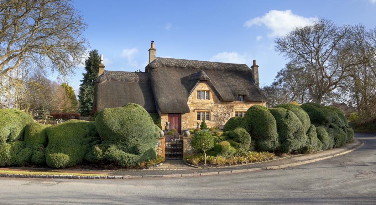 Англичане не жалеют денег на благоустройство жилища и озеленение участка