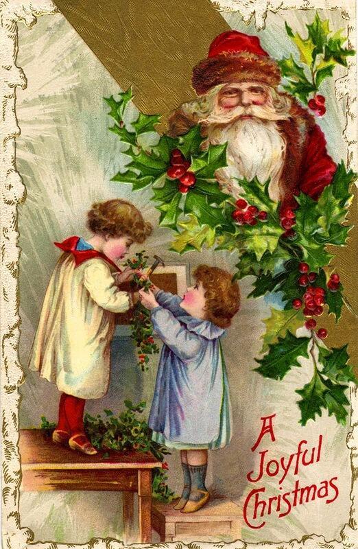 В странах Западной Европы веточка остролиста с красными плодами является атрибутом Рождества