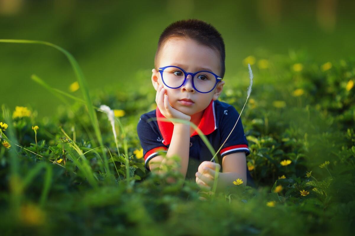 До двух лет ребенок может мало говорить, обращать внимание нужно на то, насколько хорошо он понимает обращенную к нему речь