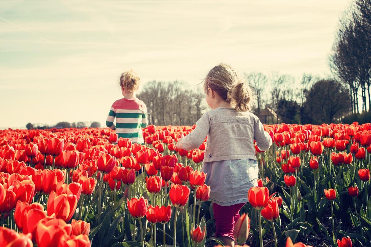 Ребенок развивается хорошо, когда растет в комфортной и безопасной атмосфере