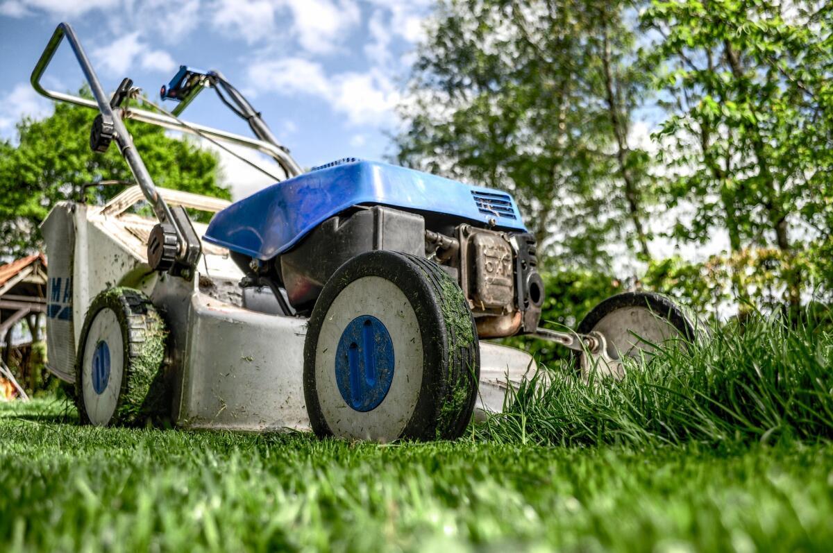 Шумные газонокосилки утомляют дачников, на смену им приходит новая эстетика