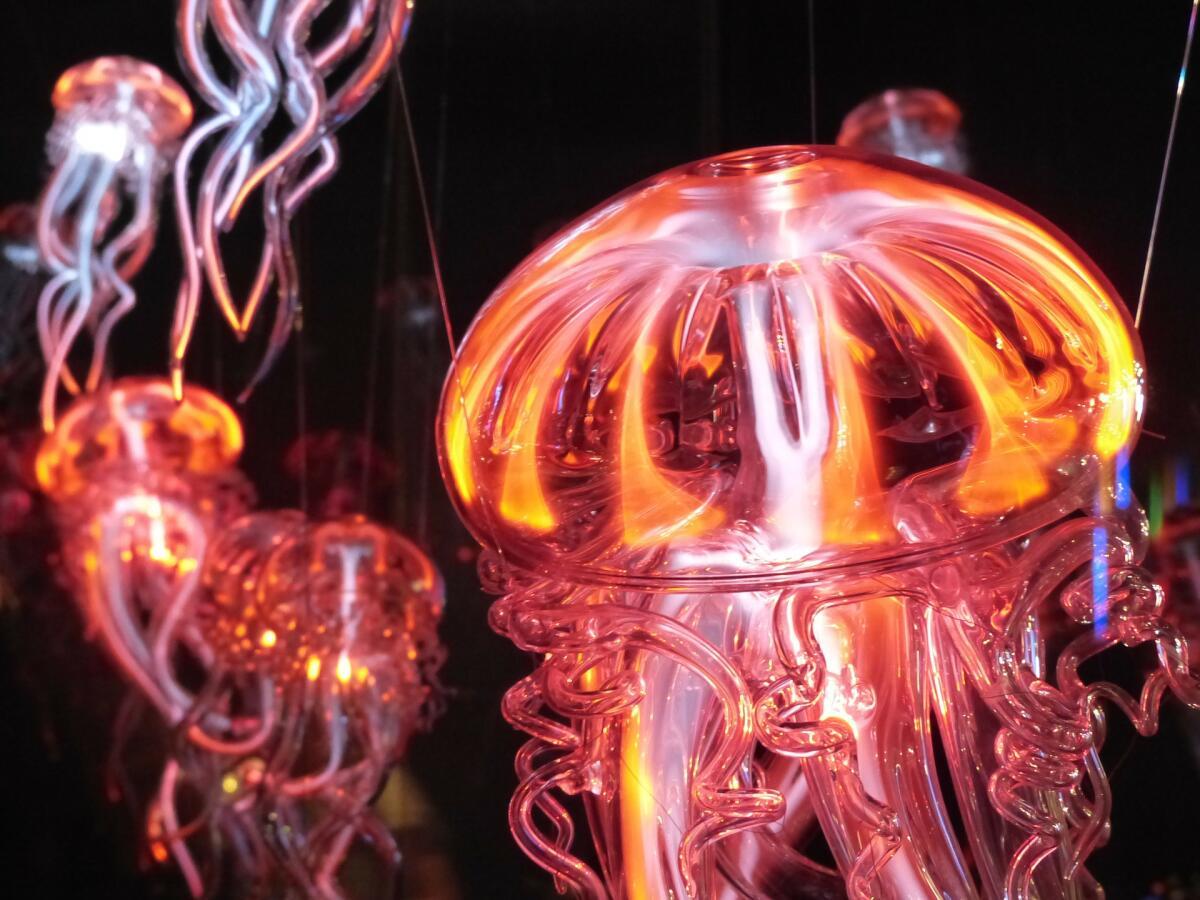 Фантастическая картина светящихся медуз