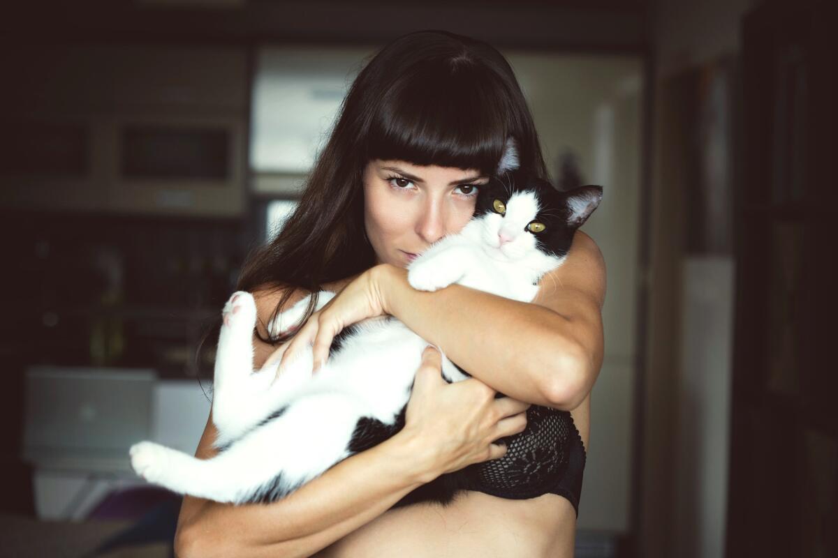 Почему кошки мурлыкают когда их гладишь? почему кошки мурчат когда их гладят