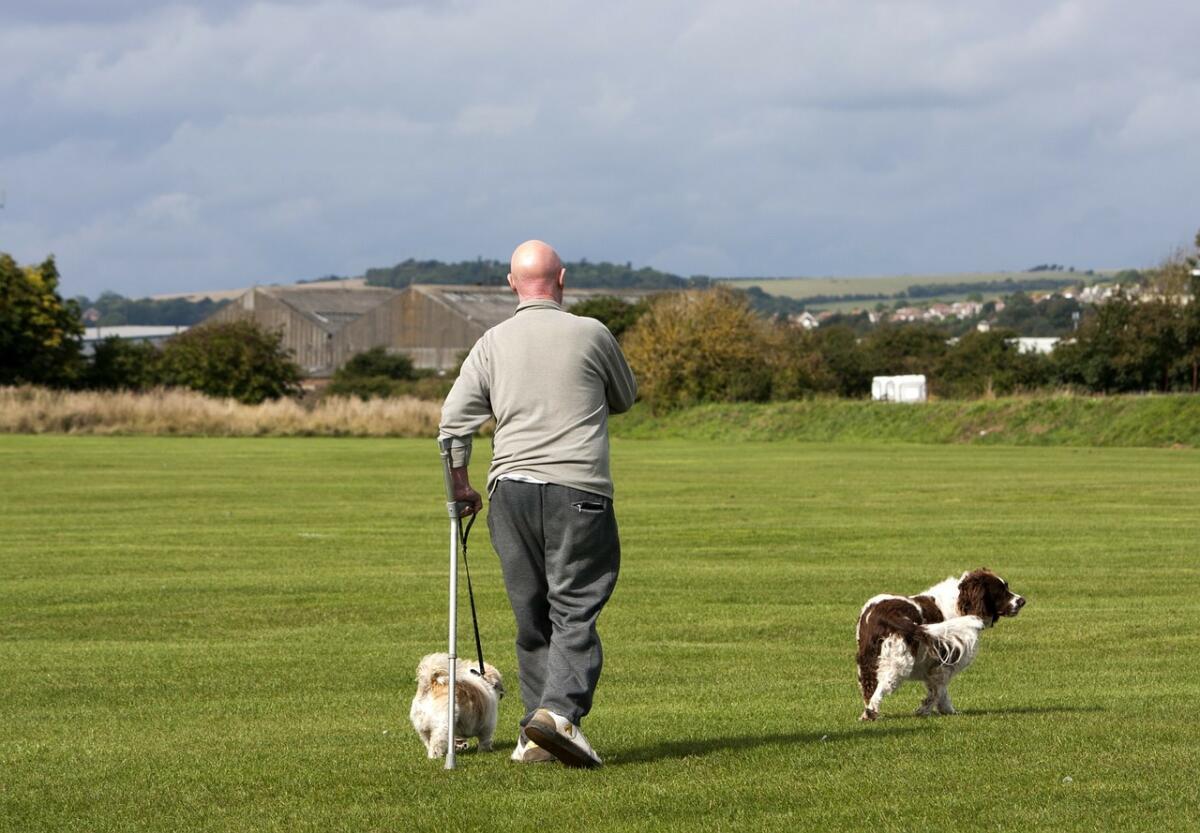Снижается количество переломов шейки бедра - тяжелейшего недуга пожилых людей