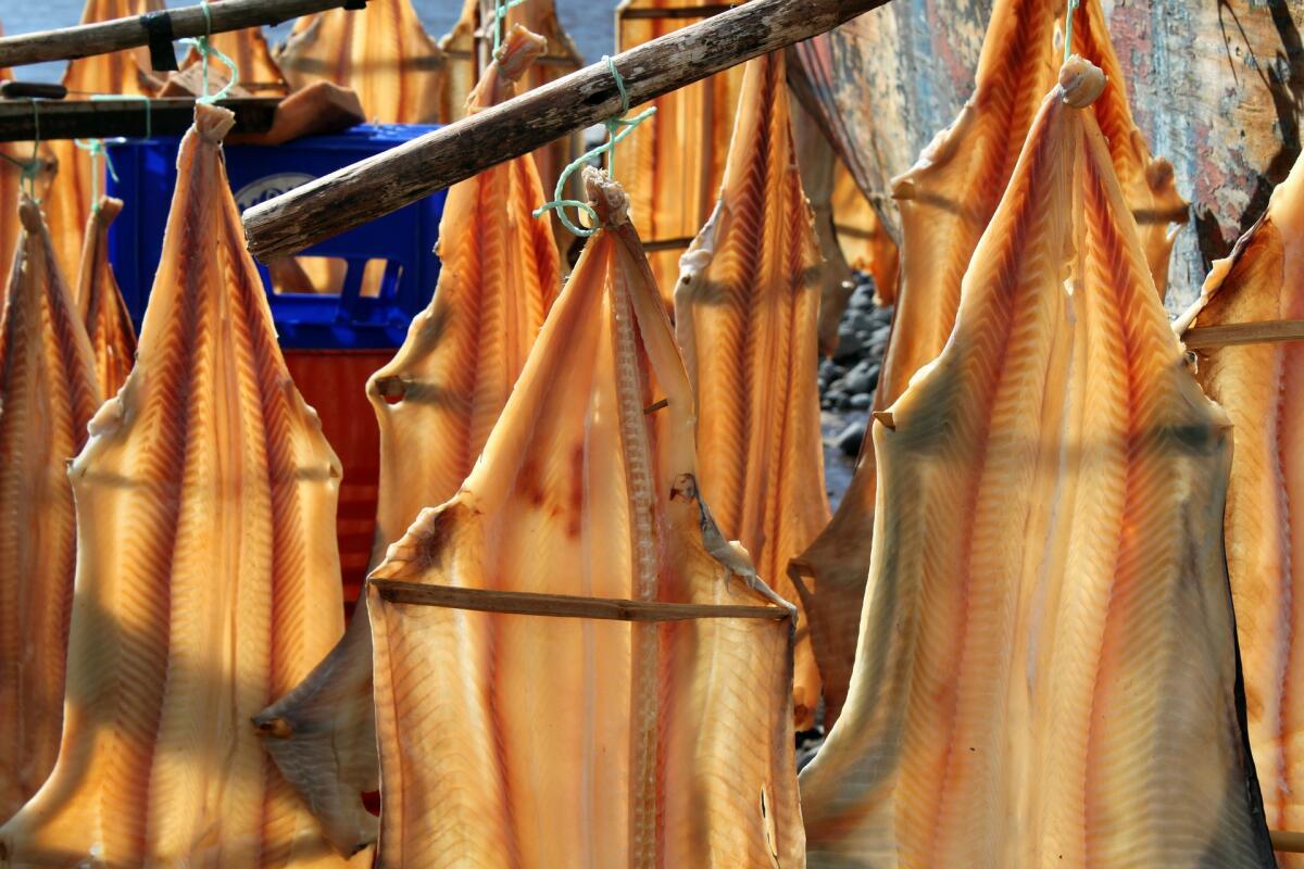 Заготовка рыбы мало изменилась за тысячелетия