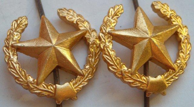 Общевойсковая эмблема — обрамленная венком пятиконечная звезда