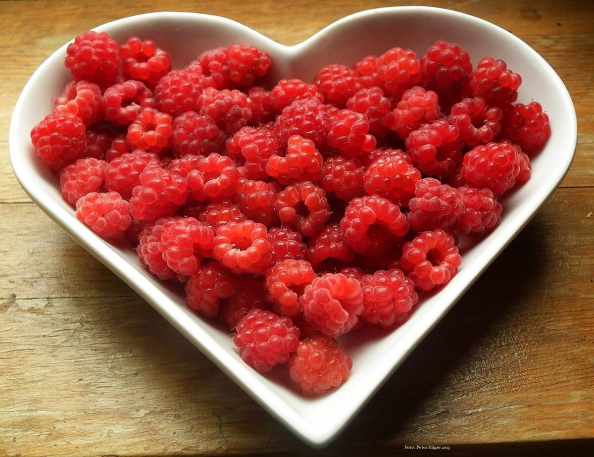 Вкусный запах еды включает процесс пищеварения