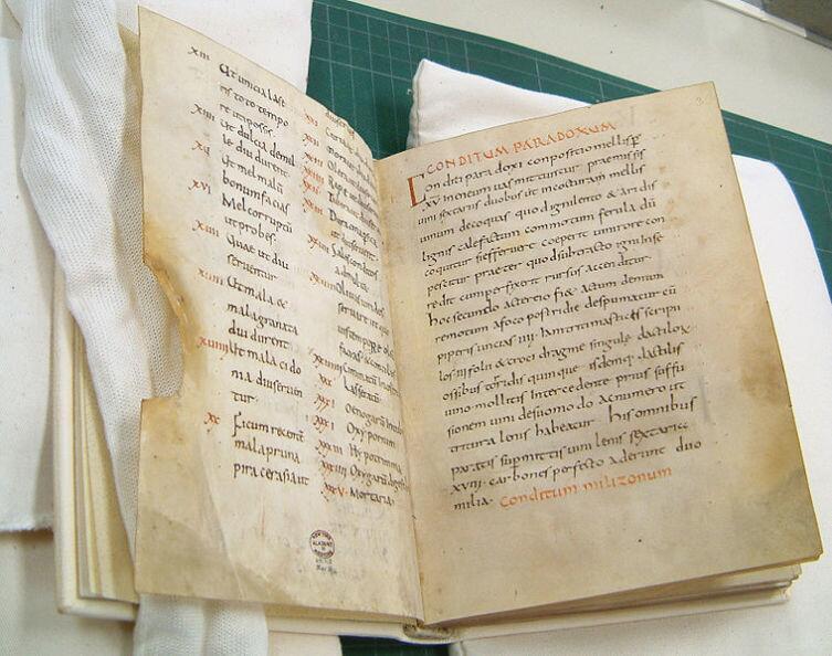 De Re Coquinaria — одна из старейших кулинарных книг в мире
