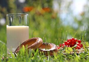 Как приготовить топленое молоко в домашних условиях?