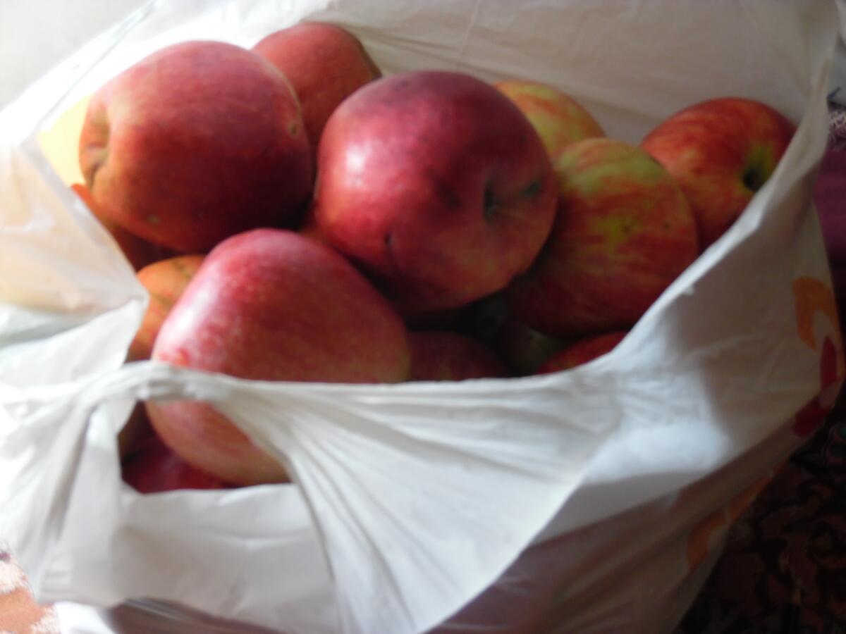 Яблоко — один из самых непростых фруктов