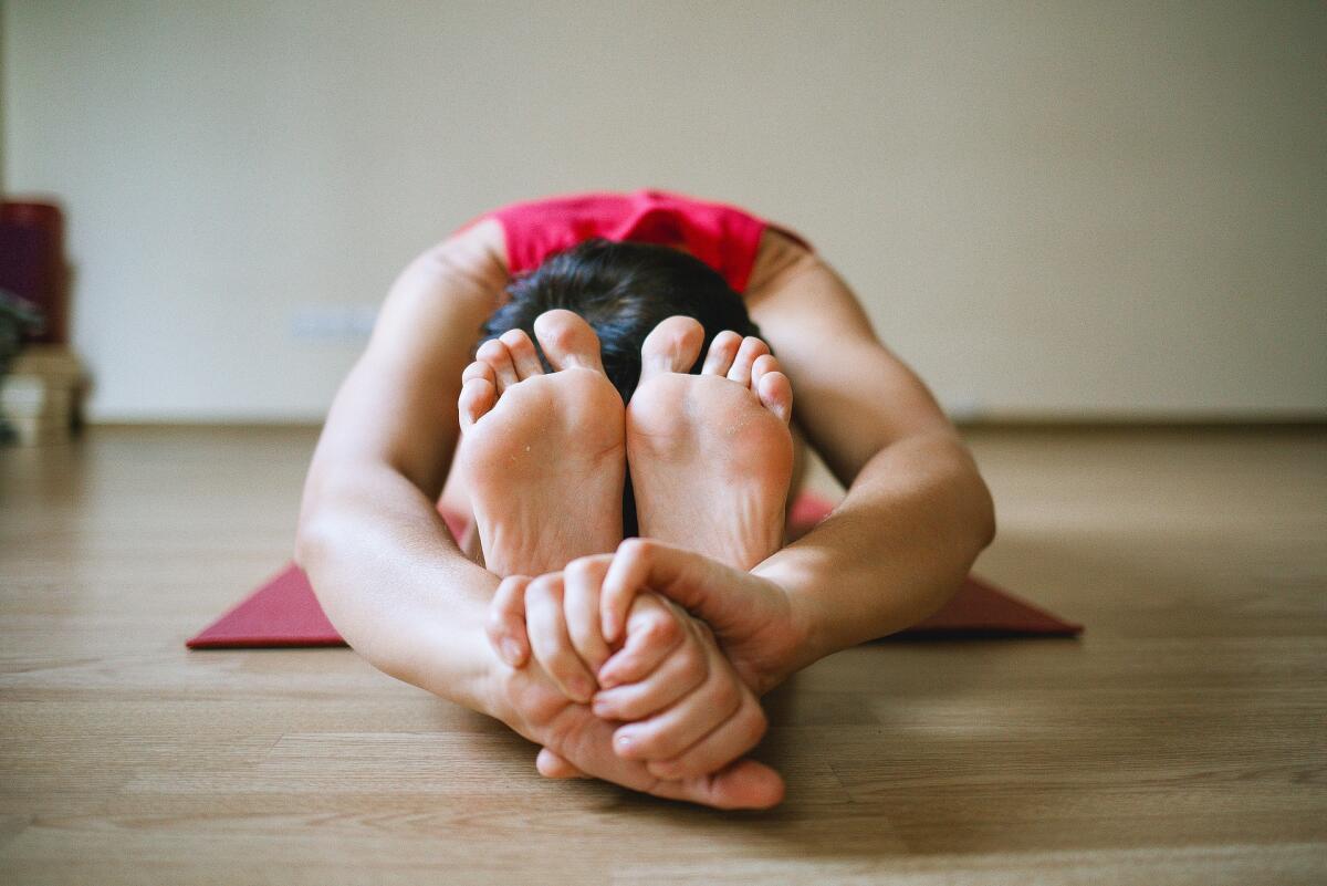 Основу йоги составляют асаны