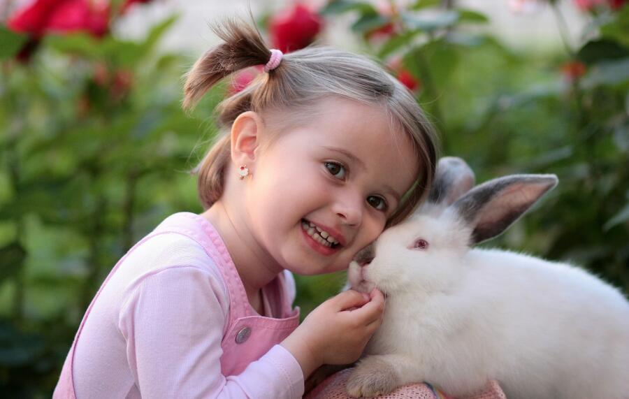 Кролики очень подвержены стрессам, «любят» переживать, как люди
